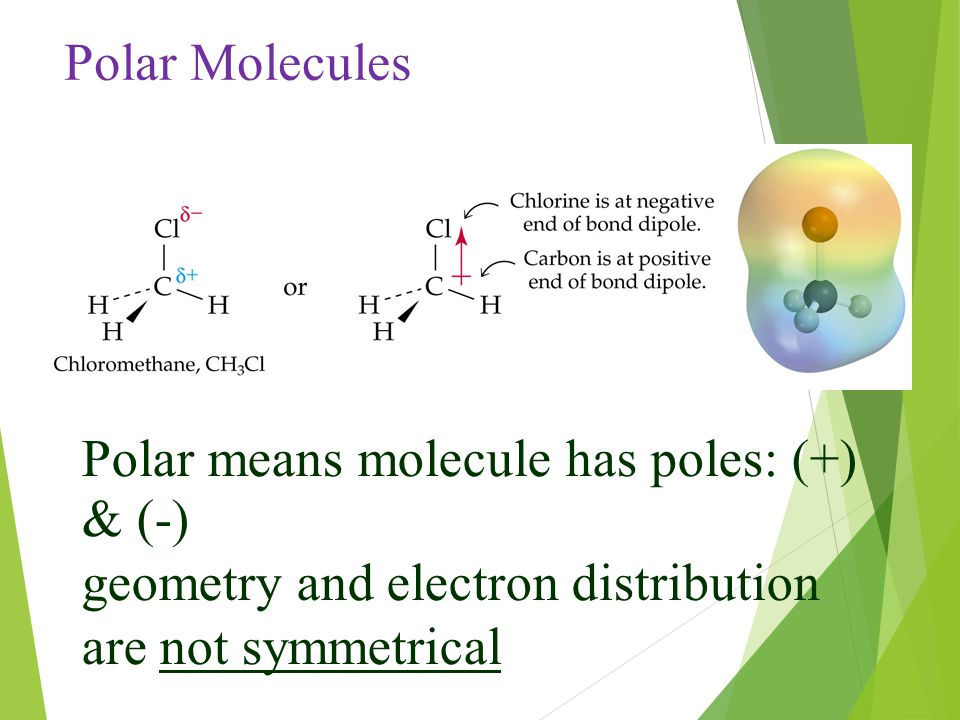 Polar Molecules Polar means molecule has poles: (+) & (-) geometry and electron distribution are not symmetrical.
