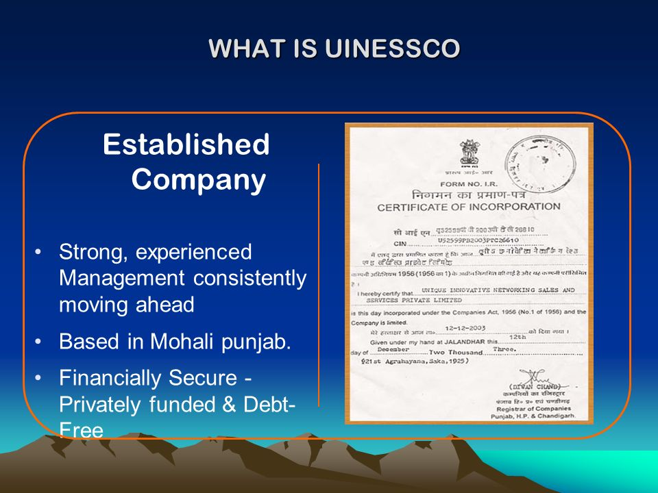 Established Company WHAT IS UINESSCO