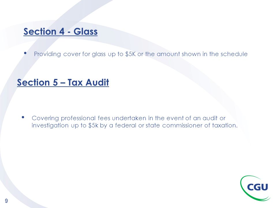 Section 4 - Glass Section 5 – Tax Audit
