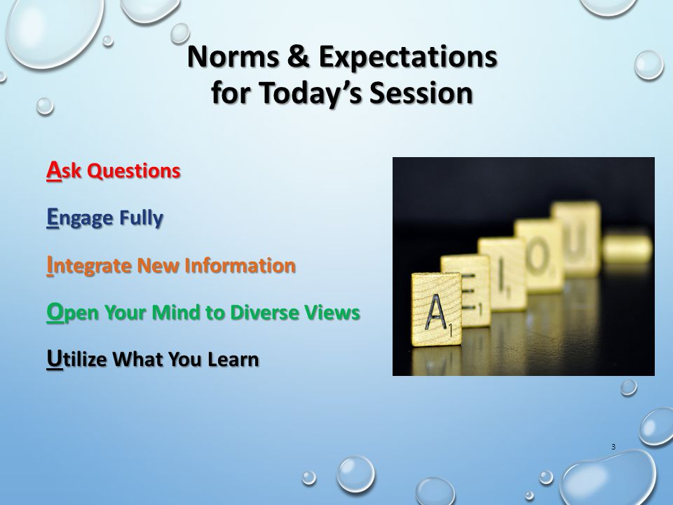 Norms & Expectations for Today's Session