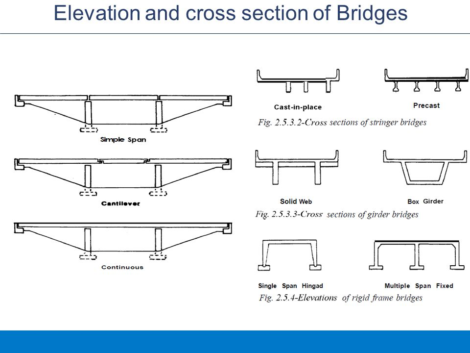 Elevation and cross section of Bridges