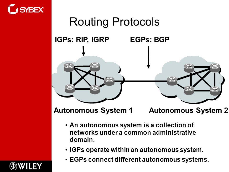 Routing Protocols IGPs: RIP, IGRP EGPs: BGP Autonomous System 1
