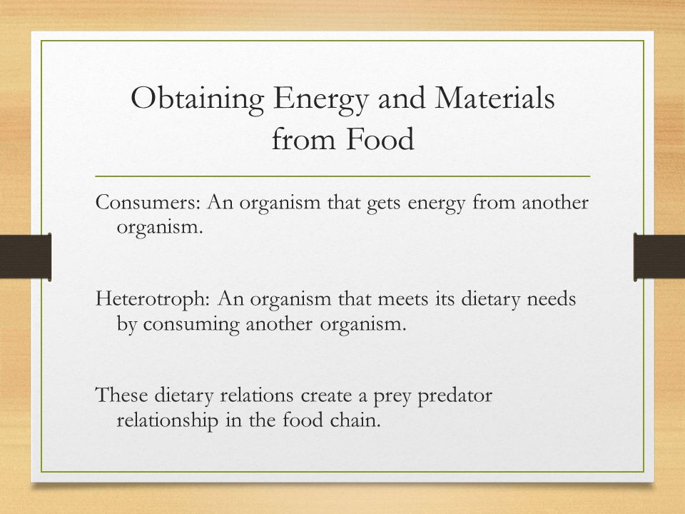 Obtaining Energy and Materials from Food
