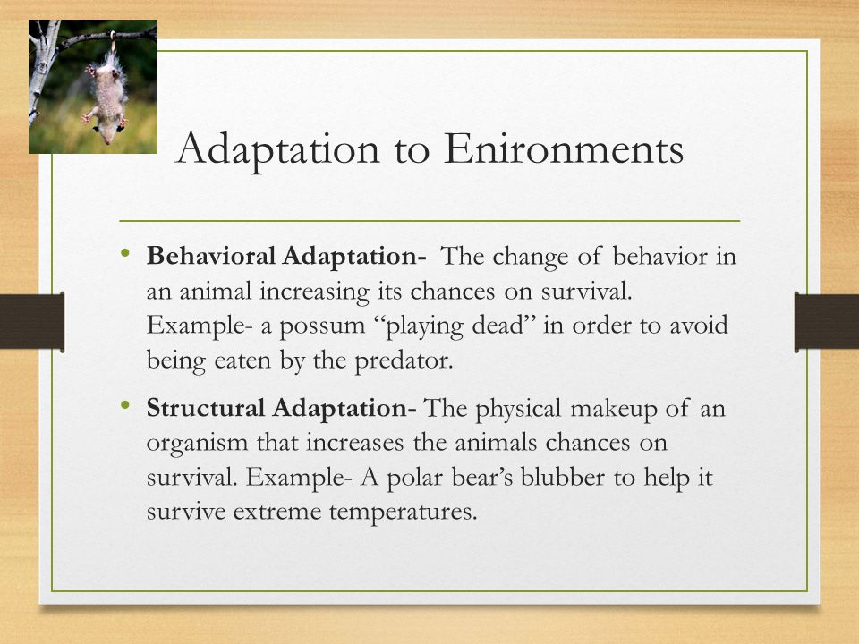Adaptation to Enironments