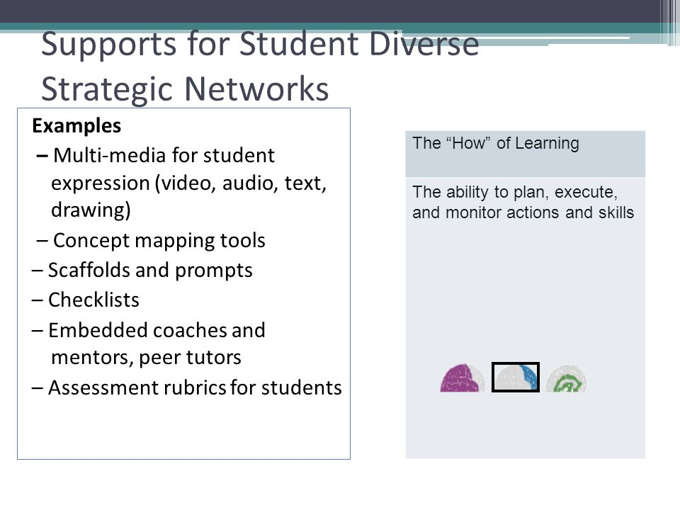 Supports for Student Diverse Strategic Networks