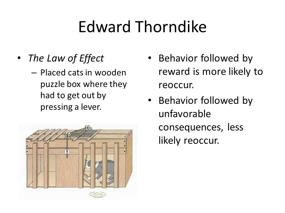 Edward Thorndike The Law of Effect