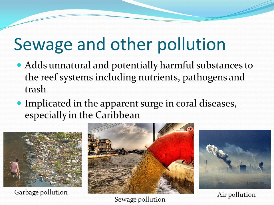 Sewage and other pollution