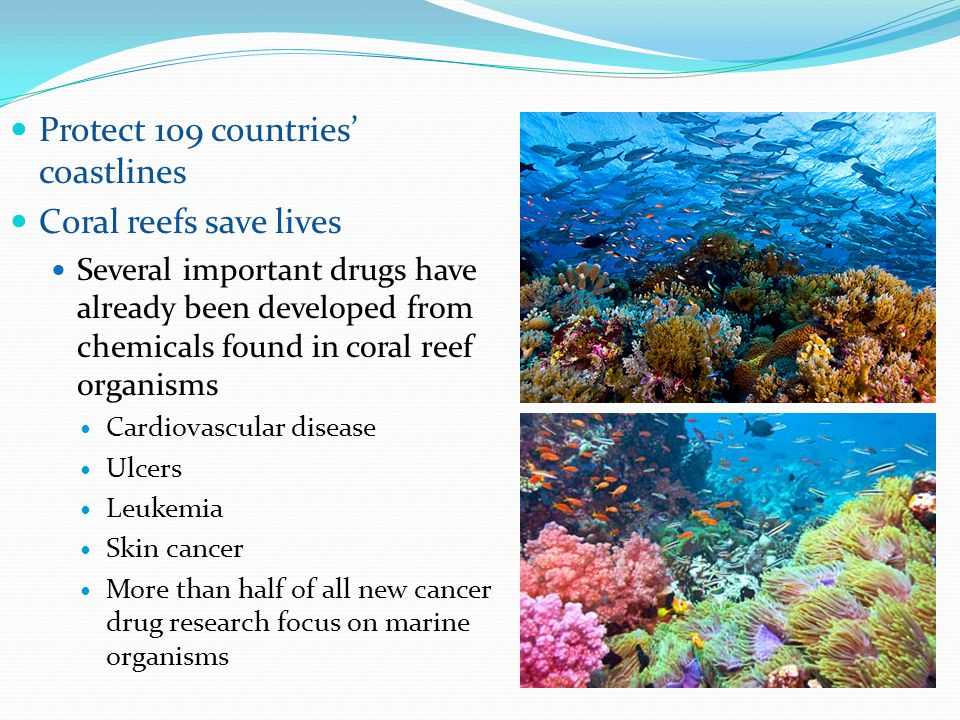 Protect 109 countries' coastlines Coral reefs save lives