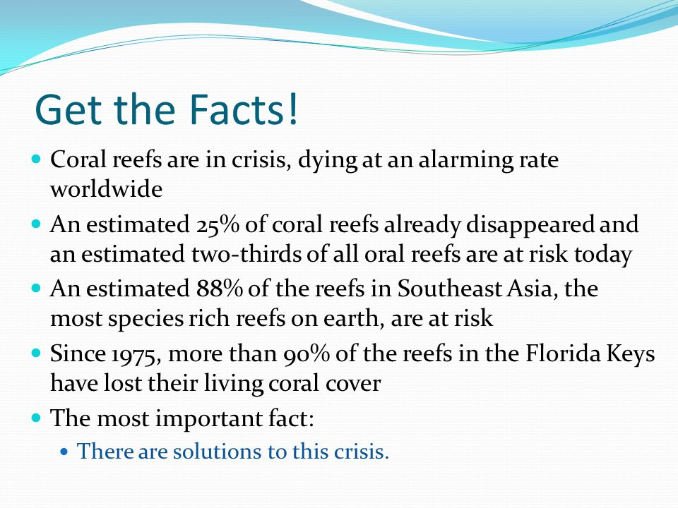 Get the Facts! Coral reefs are in crisis, dying at an alarming rate worldwide.
