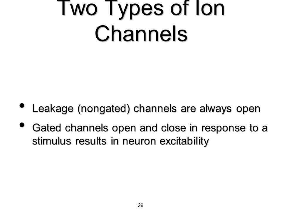 Two Types of Ion Channels
