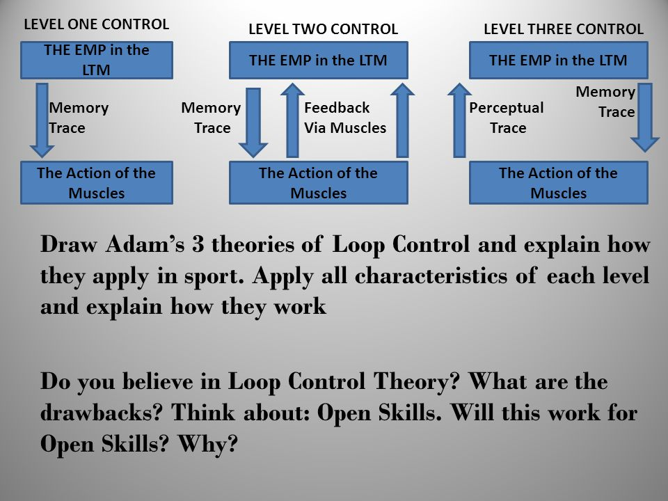 Draw Adam's 3 theories of Loop Control and explain how they apply in sport. Apply all characteristics of each level and explain how they work