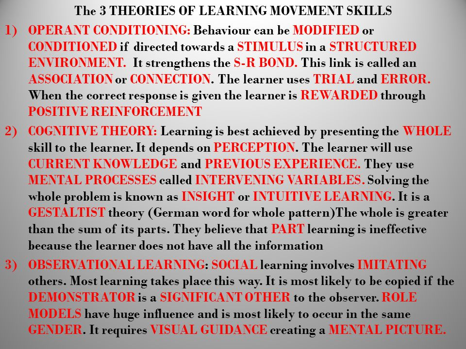 The 3 THEORIES OF LEARNING MOVEMENT SKILLS