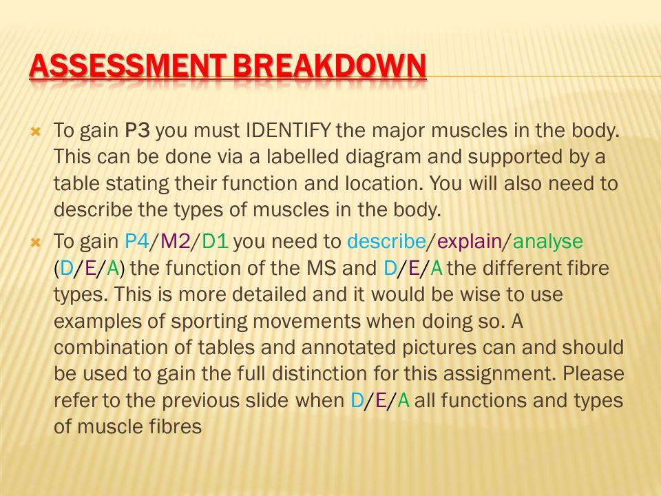 Assessment breakdown