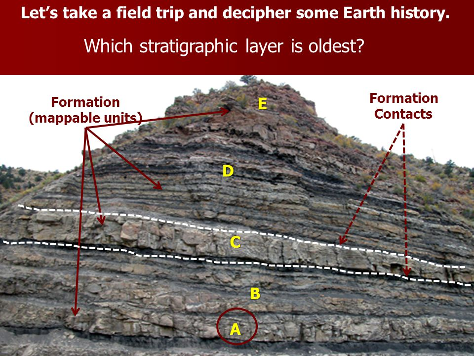 Which stratigraphic layer is oldest