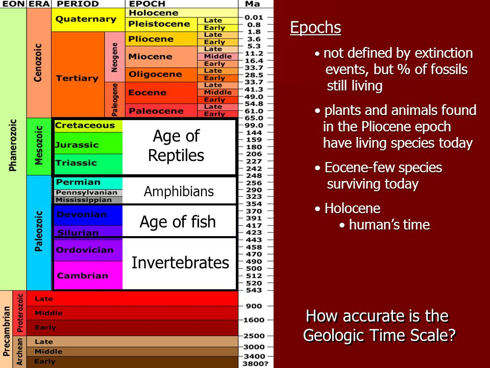 Epochs Age of Reptiles Age of fish Invertebrates How accurate is the