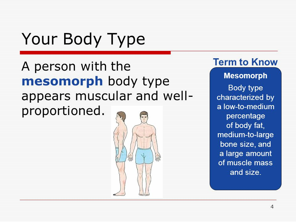 Your Body Type Mesomorph.