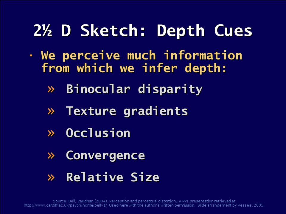 2½ D Sketch: Depth CuesWe perceive much information from which we infer depth: Binocular disparity.