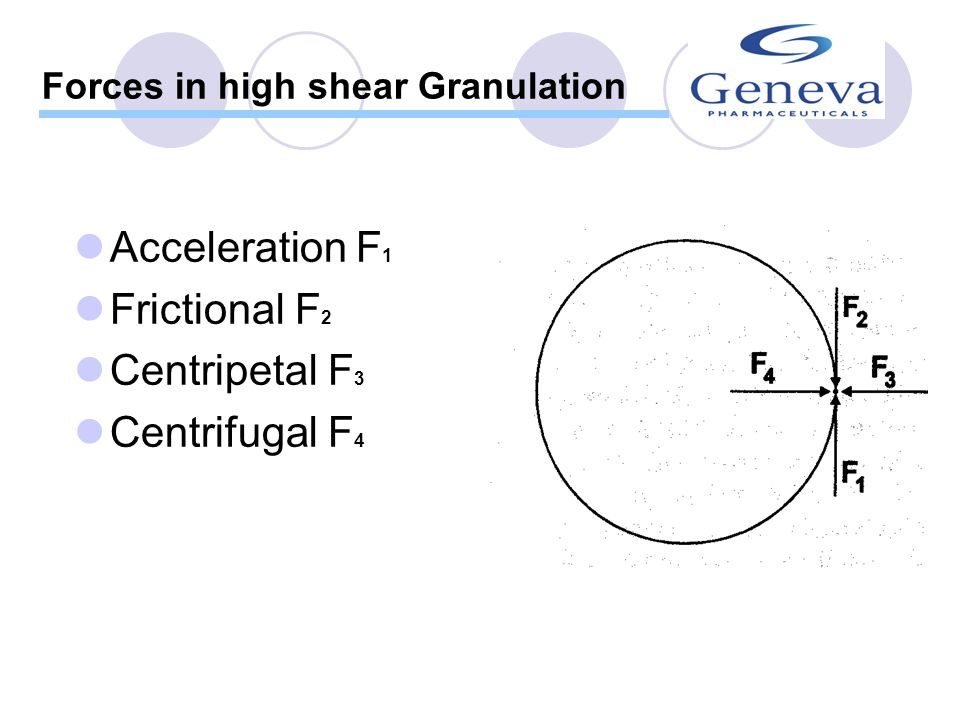 Forces in high shear Granulation