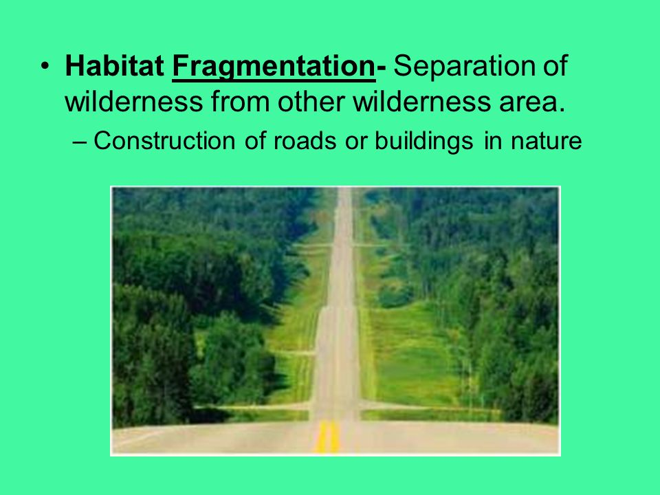 Habitat Fragmentation- Separation of wilderness from other wilderness area.