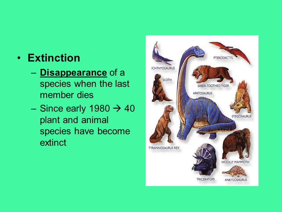 Extinction Disappearance of a species when the last member dies