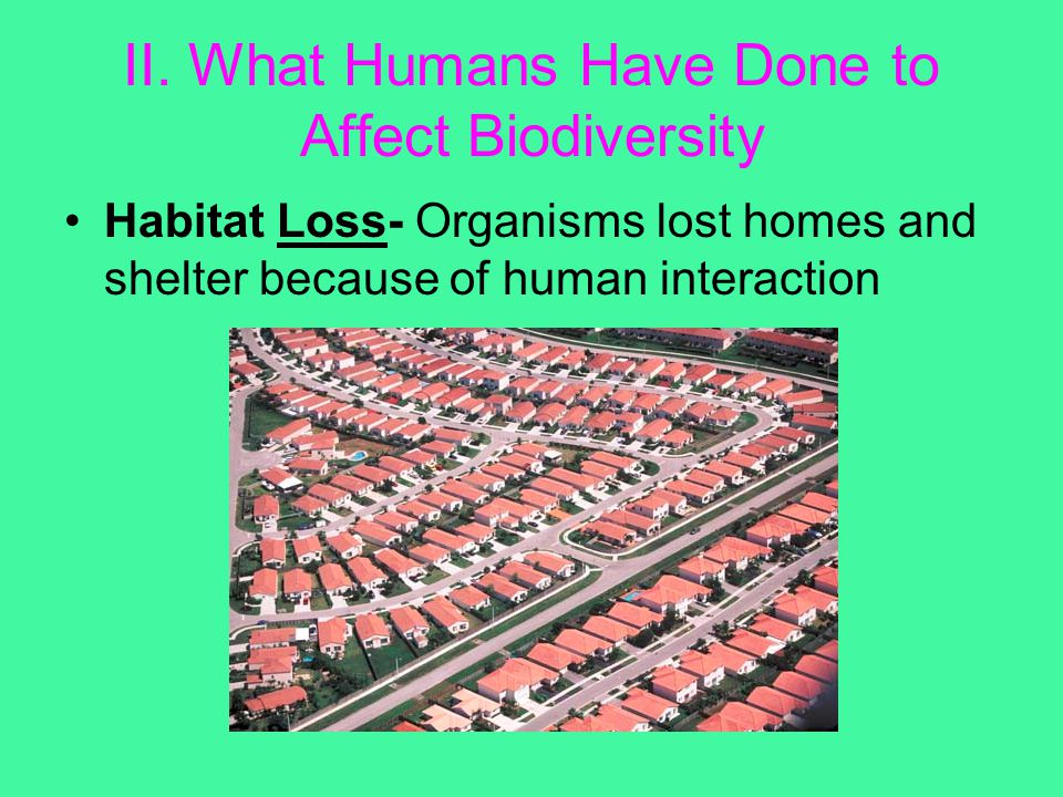 II. What Humans Have Done to Affect Biodiversity