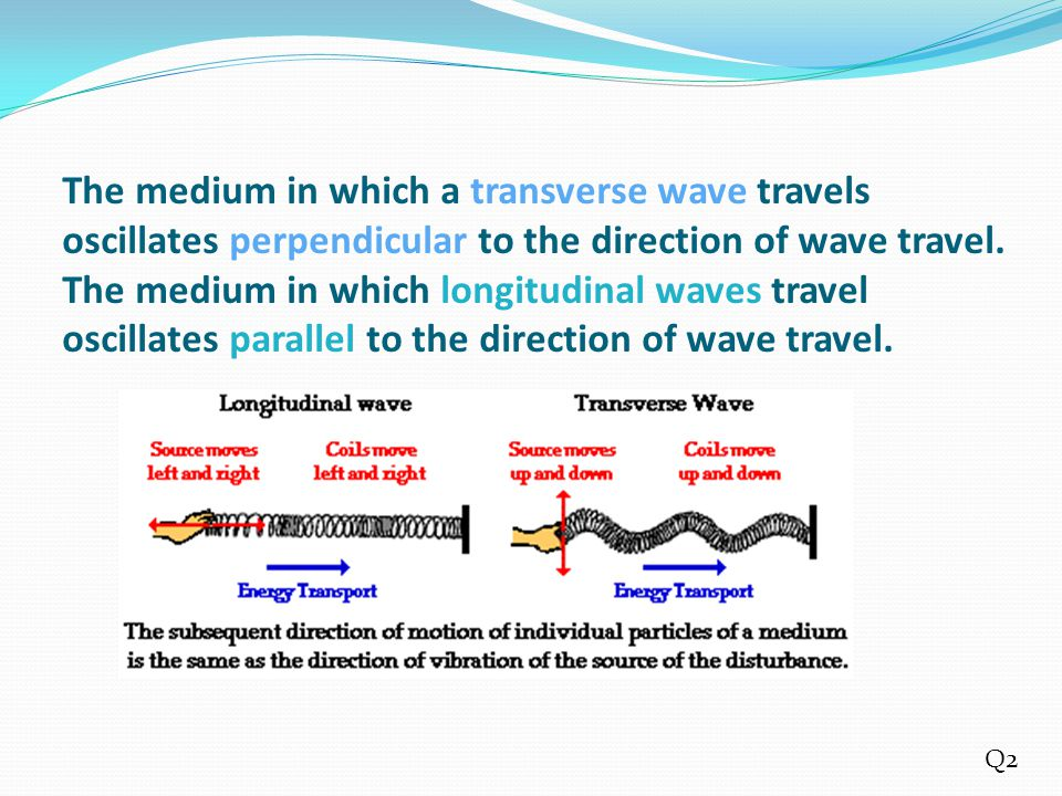 The medium in which a transverse wave travels oscillates perpendicular to the direction of wave travel. The medium in which longitudinal waves travel oscillates parallel to the direction of wave travel.