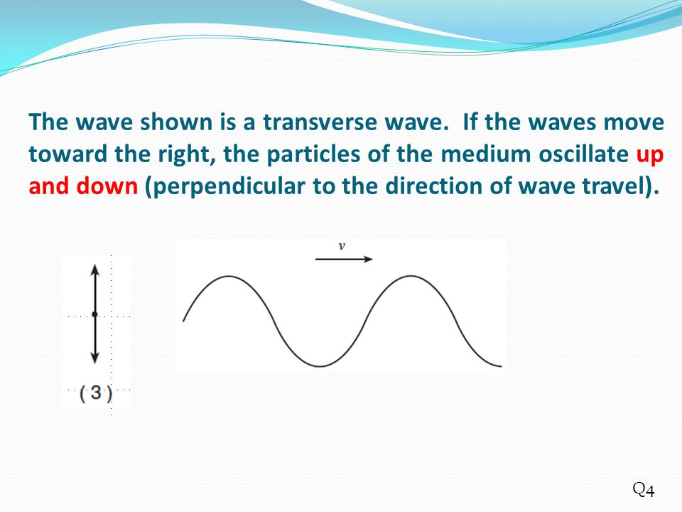 The wave shown is a transverse wave