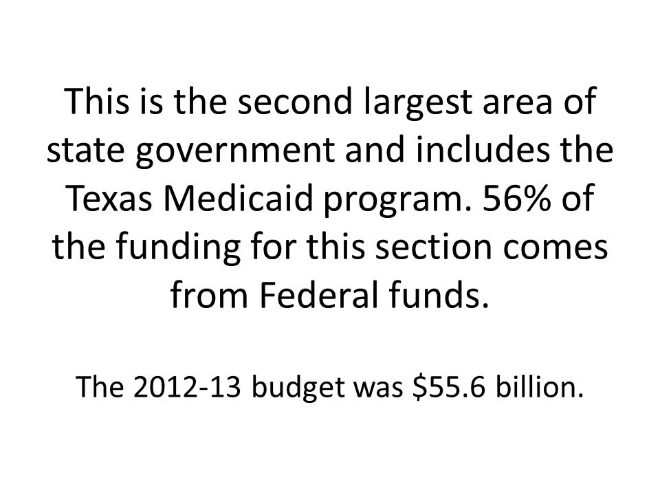 This is the second largest area of state government and includes the Texas Medicaid program.