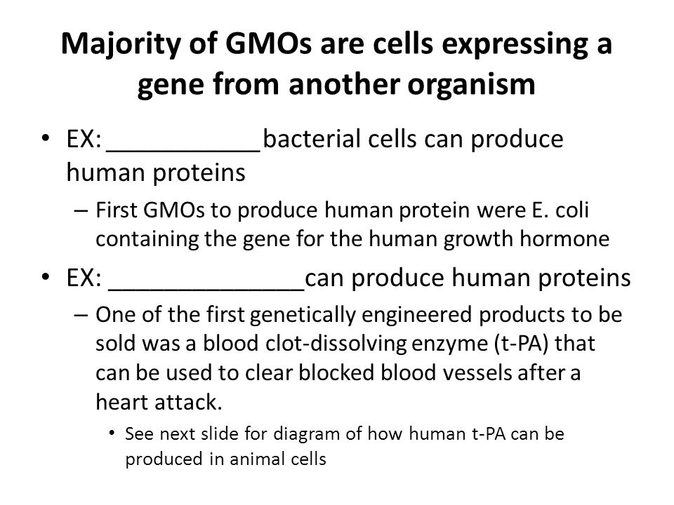 Majority of GMOs are cells expressing a gene from another organism