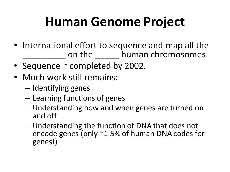 Human Genome Project International effort to sequence and map all the _________ on the _____ human chromosomes.