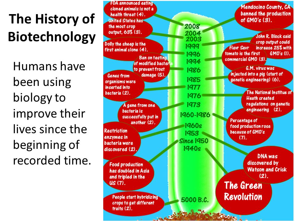 The History of Biotechnology
