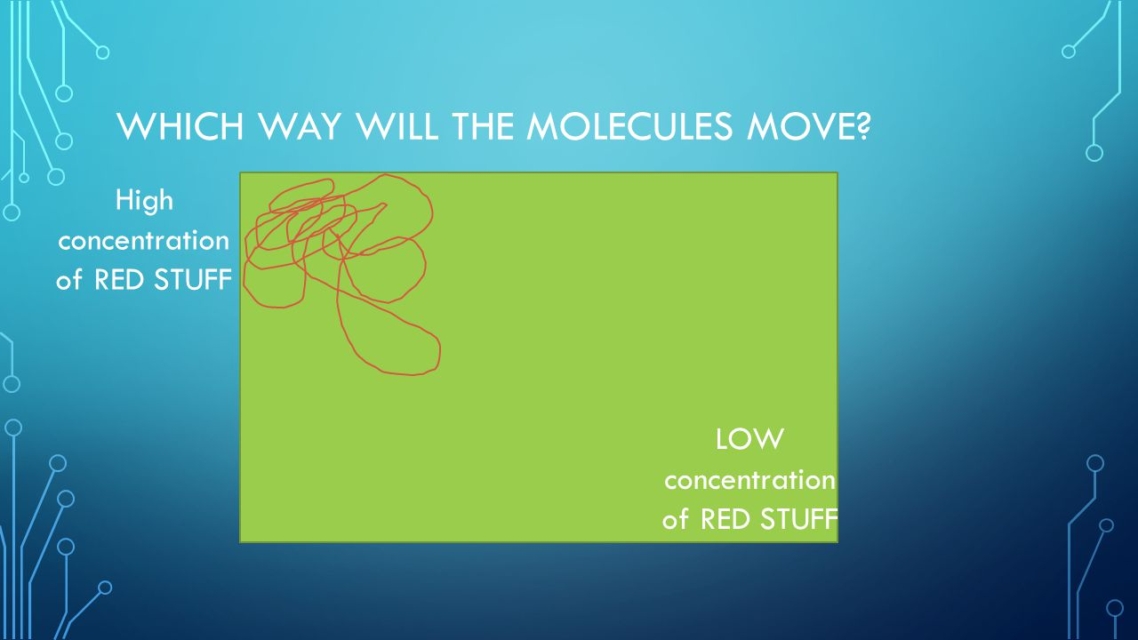 Which way will the molecules move