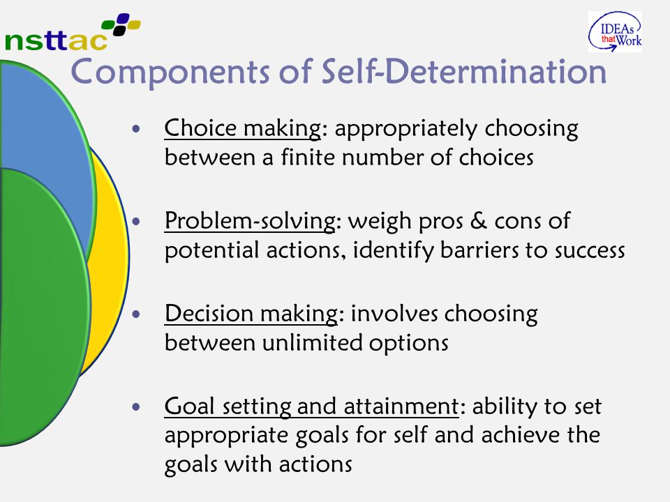 Components of Self-Determination