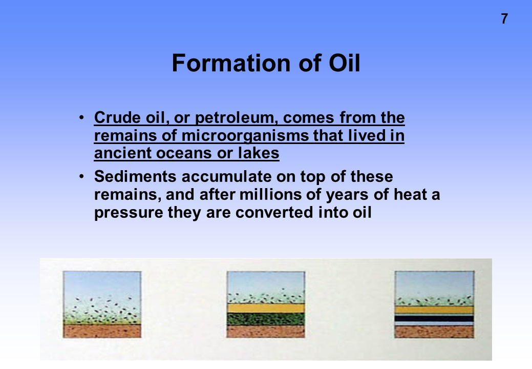 Formation of Oil Crude oil, or petroleum, comes from the remains of microorganisms that lived in ancient oceans or lakes.