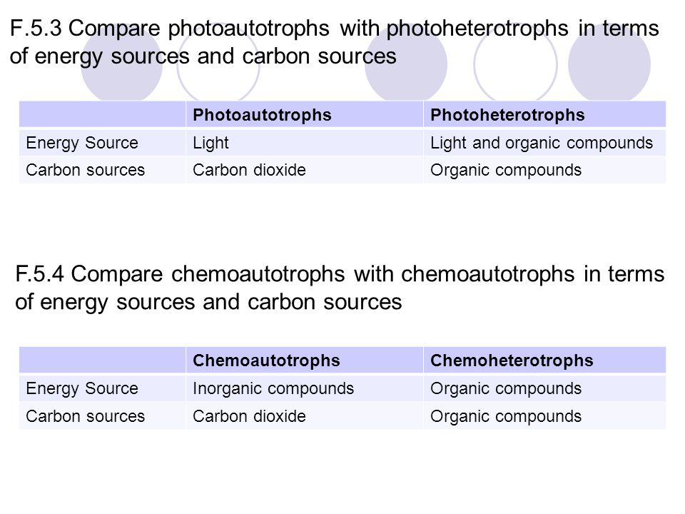 F.5.3 Compare photoautotrophs with photoheterotrophs in terms of energy sources and carbon sources