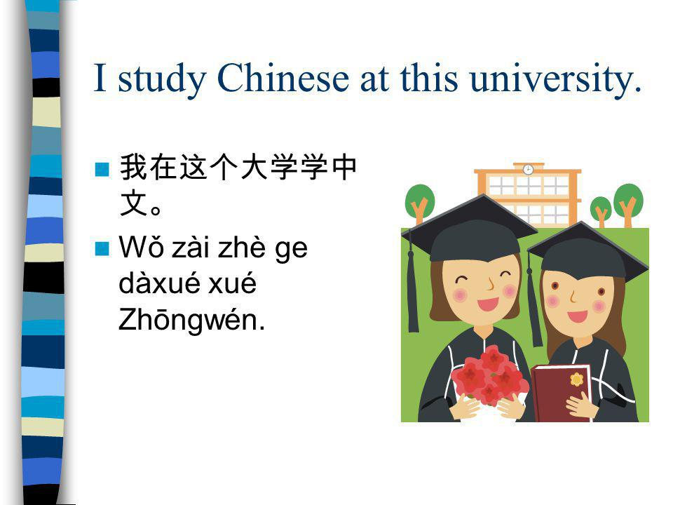 I study Chinese at this university.