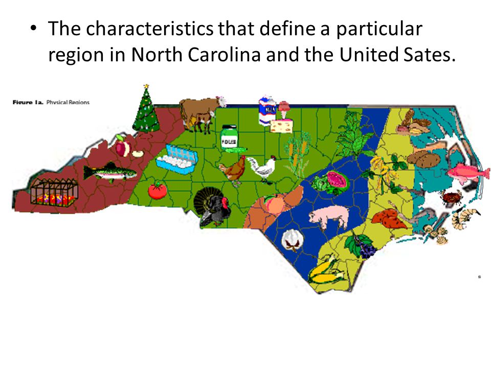 The characteristics that define a particular region in North Carolina and the United Sates.