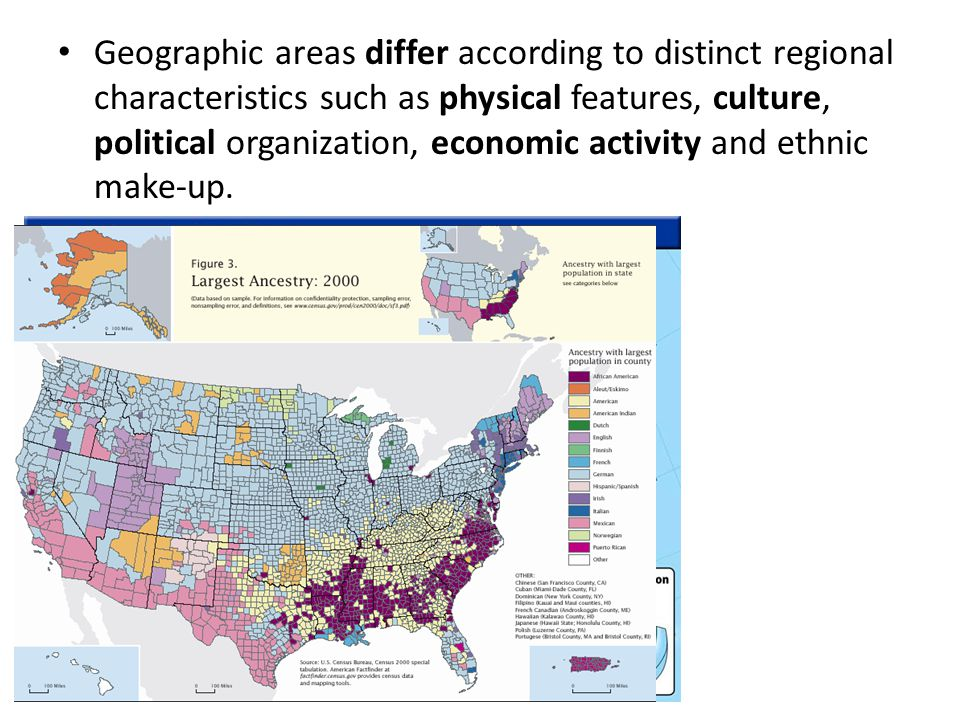 Geographic areas differ according to distinct regional characteristics such as physical features, culture, political organization, economic activity and ethnic make-up.