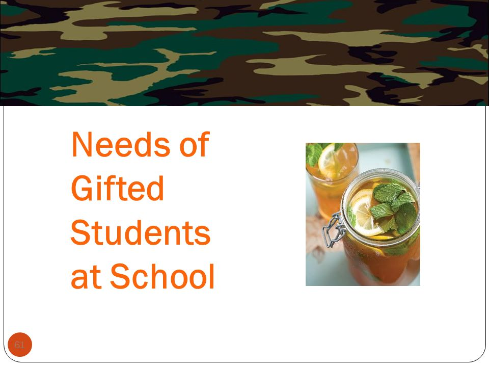 Needs of Gifted Students at School