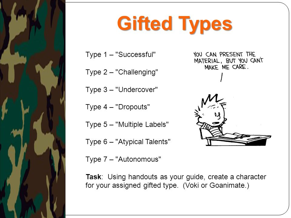 Gifted Types Type 1 – Successful Type 2 – Challenging