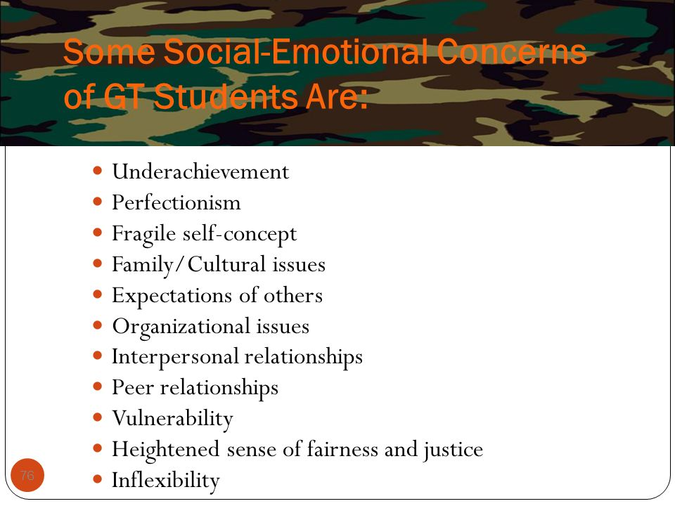 Some Social-Emotional Concerns of GT Students Are: