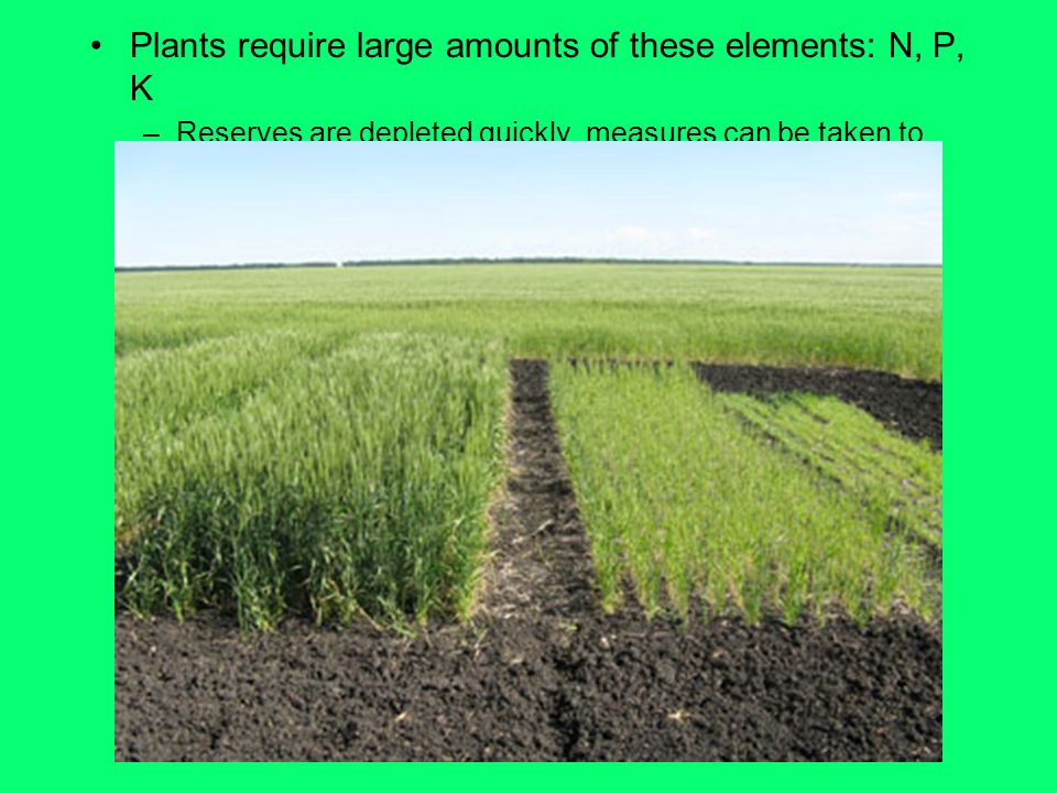 Plants require large amounts of these elements: N, P, K