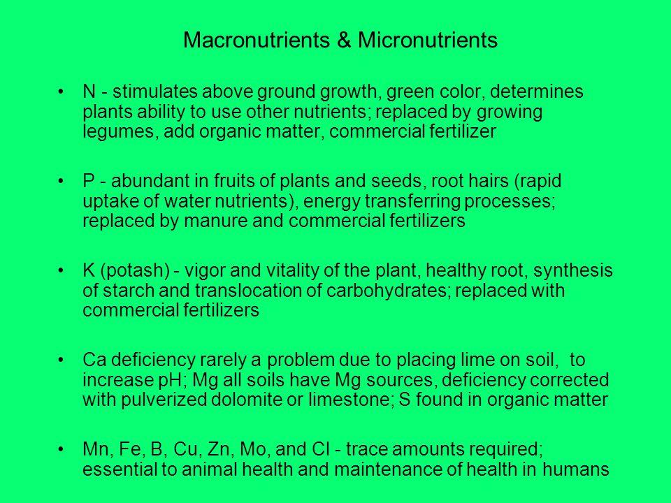 Macronutrients & Micronutrients