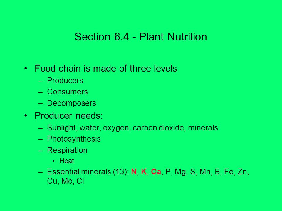 Section Plant Nutrition