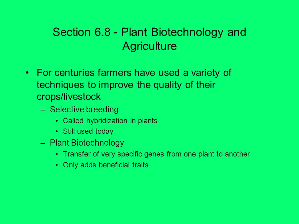 Section Plant Biotechnology and Agriculture