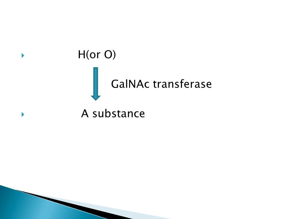 H(or O) GalNAc transferase A substance