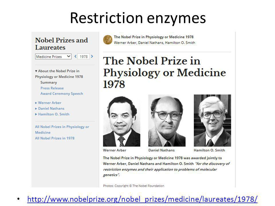 Restriction enzymes http://www.nobelprize.org/nobel_prizes/medicine/laureates/1978/