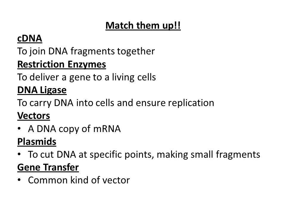 Match them up!! cDNA. To join DNA fragments together. Restriction Enzymes. To deliver a gene to a living cells.