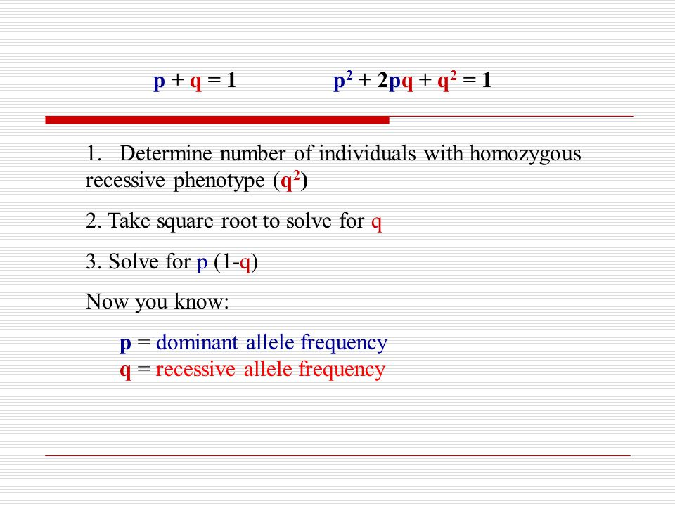p + q = 1 p2 + 2pq + q2 = 1 Determine number of individuals with homozygous. recessive phenotype (q2)