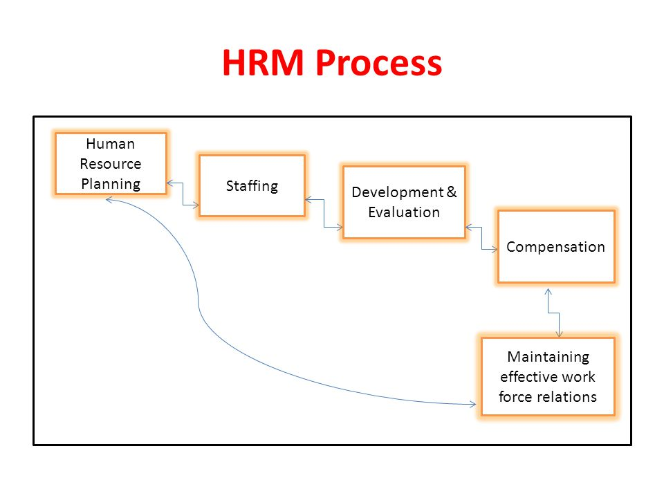 HRM Process Human Resource Planning Staffing Development & Evaluation